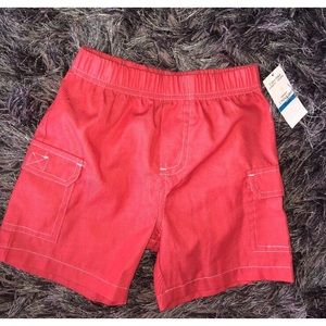 CALVIN KLEIN   Boys  Baby Shorts 24 Months